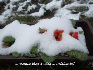 hó alatt2