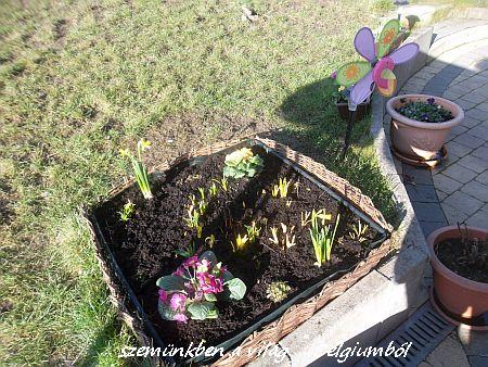 tavaszi képek2