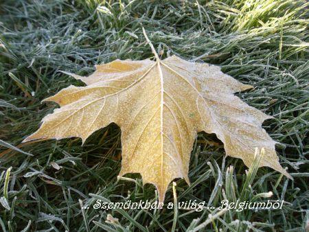 itt a tél1