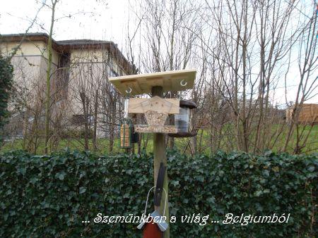 madáretetok