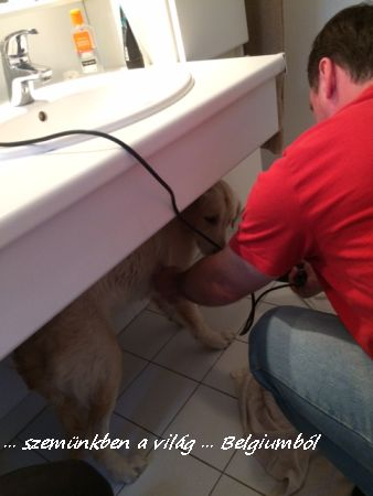 Charlie első fürdetése11