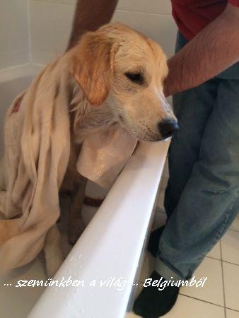 Charlie első fürdetése9