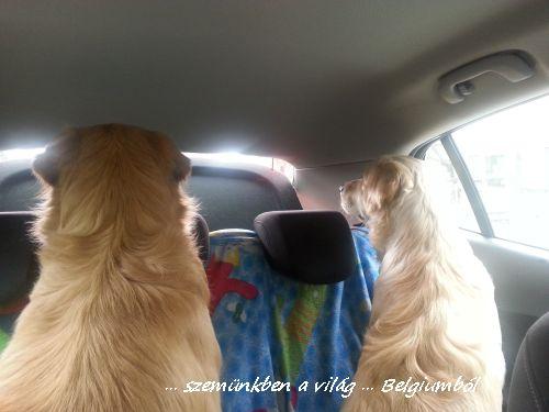kutyakozmetika charlie-val1