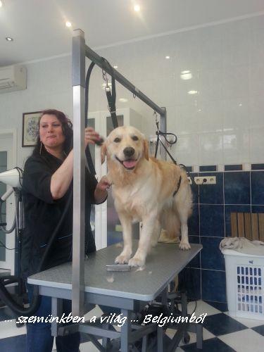 kutyakozmetika charlie-val9